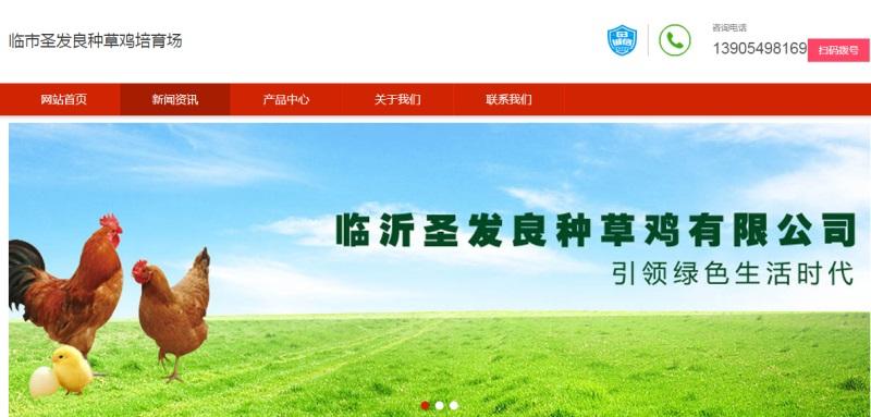 临沂圣发草鸡培育场(图1)