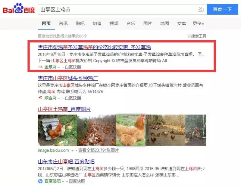 临沂圣发草鸡培育场(图5)